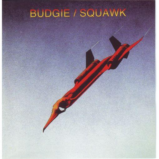 Squawk-cover