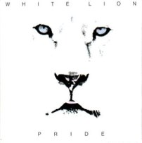 white-lion-pride