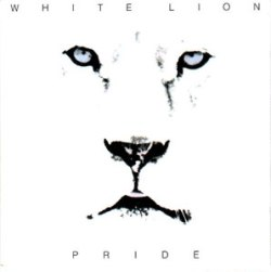 white-lion-pride
