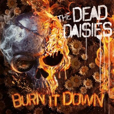 the dead dasies burn it down