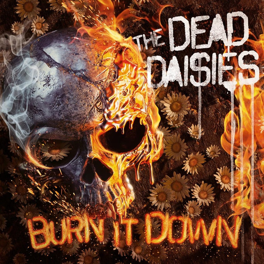 the dead dasies burn it down